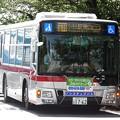 P4210030