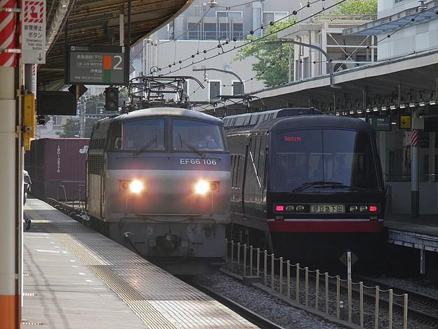 P4290056