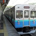 P4290059