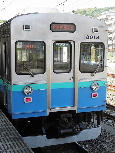 P4290060
