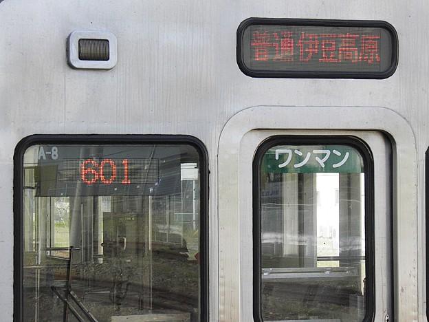 P4290061