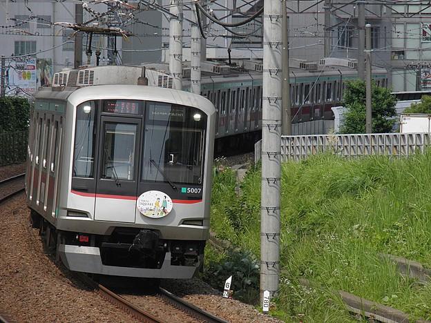 P6090009