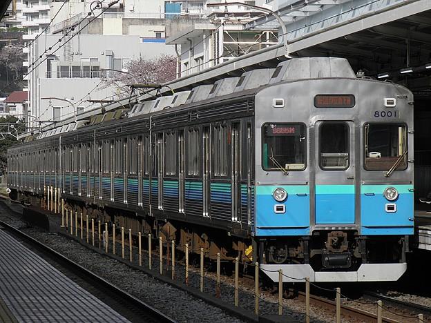 P3300068