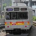P5270061