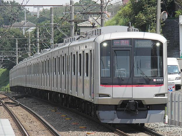 P8030048
