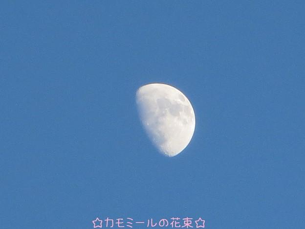 お月さま~