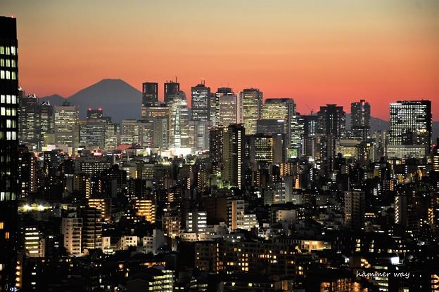DSC_6689 (3) 花粉焼けの富士山