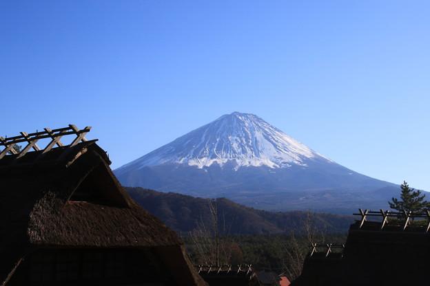 富士山 癒しの里根場 171203 01