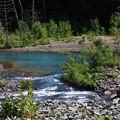 Photos: 朝の青い池 180728 03