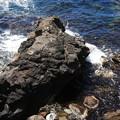 熊の寝岩 180730 01