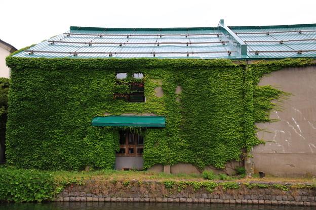 小樽運河 180801 02