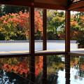 写真: 桐生 宝徳寺 181114 06