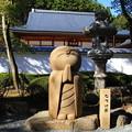 写真: 桐生 宝徳寺 181114 07