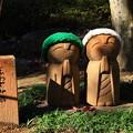 写真: 桐生 宝徳寺 181114 08