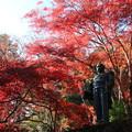 写真: 東郷公園 181130 04