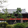写真: 上野恩賜公園 181023 03