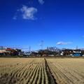 写真: 御近所散歩 181215 01