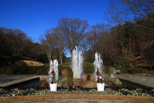 武蔵丘陵森林公園 190212 01