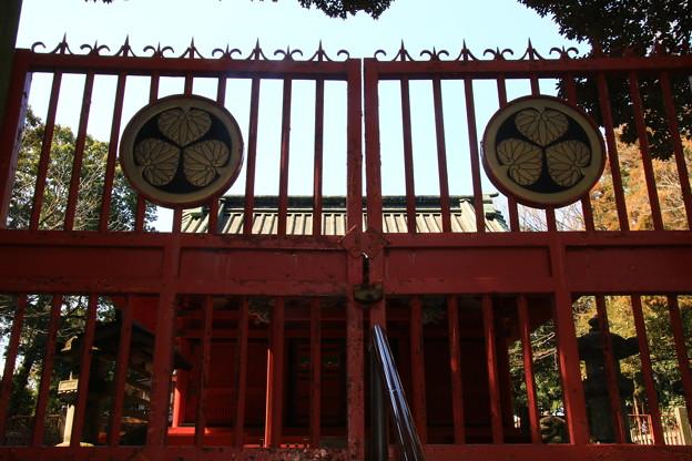 Photos: 川越旧市街 190312 12 喜多院