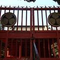 川越旧市街 190312 12 喜多院