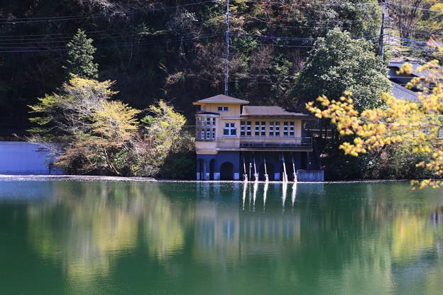 鎌北湖 190416 06