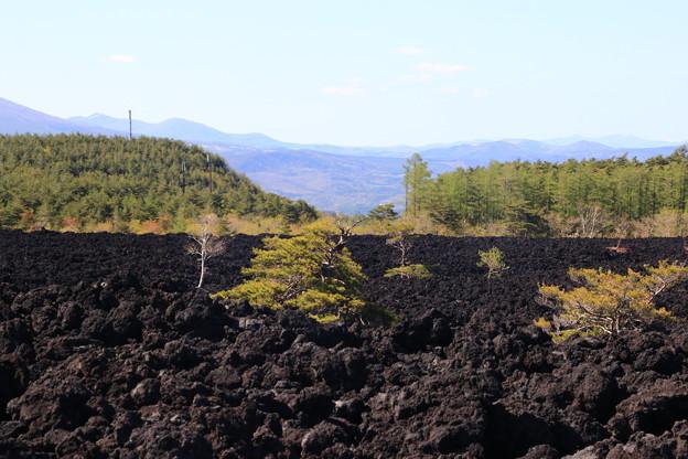 焼走り溶岩流 190512 03