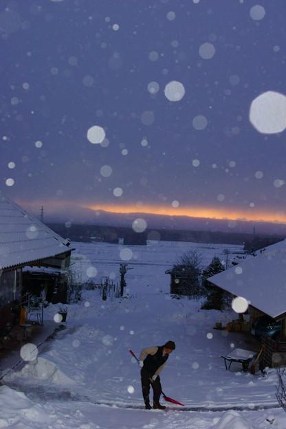 Photos: 雪かきする人