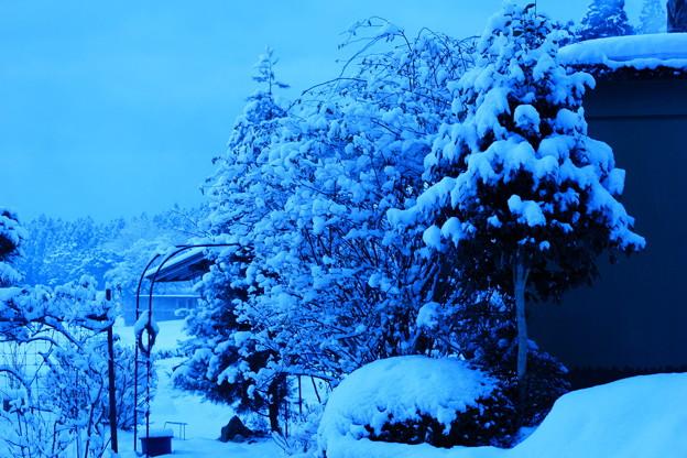 春の淡雪と~(1)