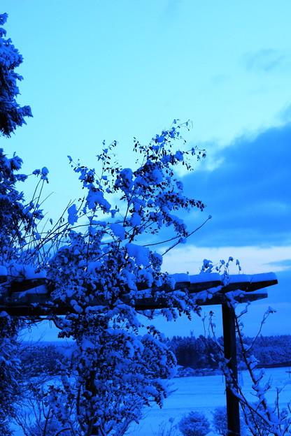 春の淡雪と~(2)