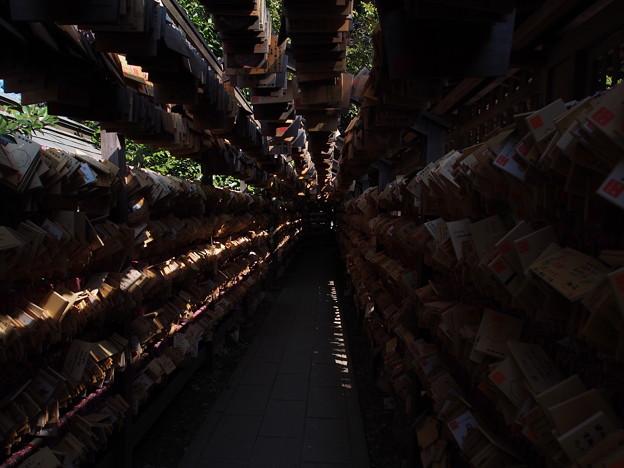 川越 氷川神社3