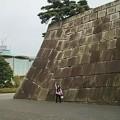 Photos: 今週も皇居  #松 #素敵世界 江戸城