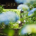 Photos: 資福寺山門