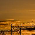 Photos: 田園都市線
