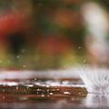 Photos: 激しい雨