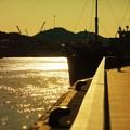 Photos: 瀬戸の光る海