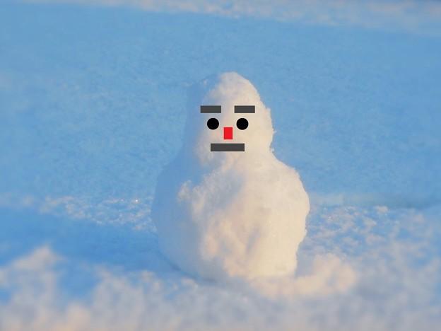 ぶるぶる震える 最強寒波の朝~新雪 初雪 赤鼻の雪だるま~