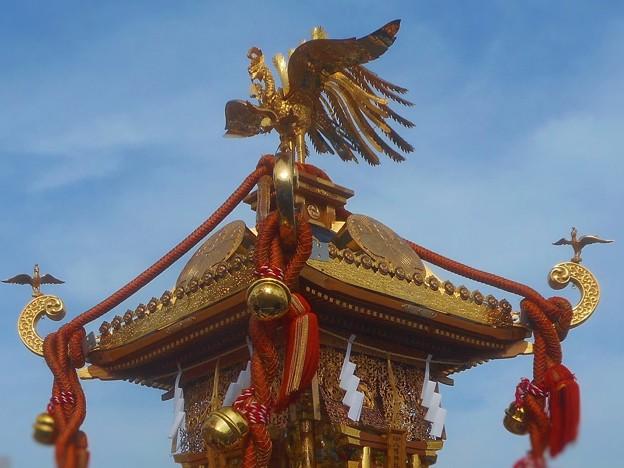 見上げれば鳳凰(ほうおう)~烏須井八幡の神輿~