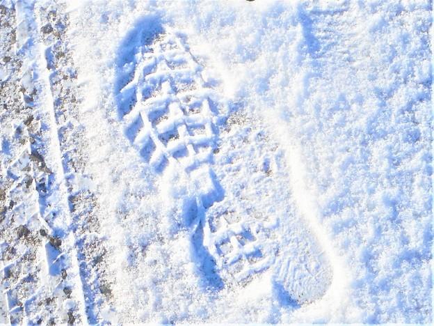 雪国でない国の@雪の朝@親子連れ@積雪2cm
