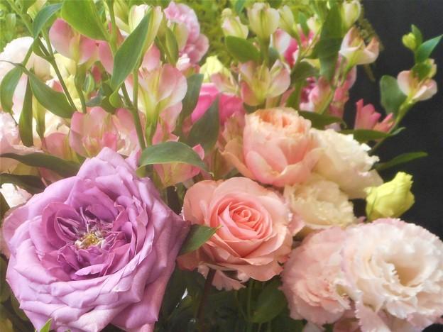 ばら・薔薇・バラ・ROSE・・・@福山ローズアリーナ