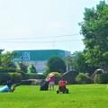 写真: とても楽しい日曜日@夏至の三日後の公園@梅雨の晴れ間