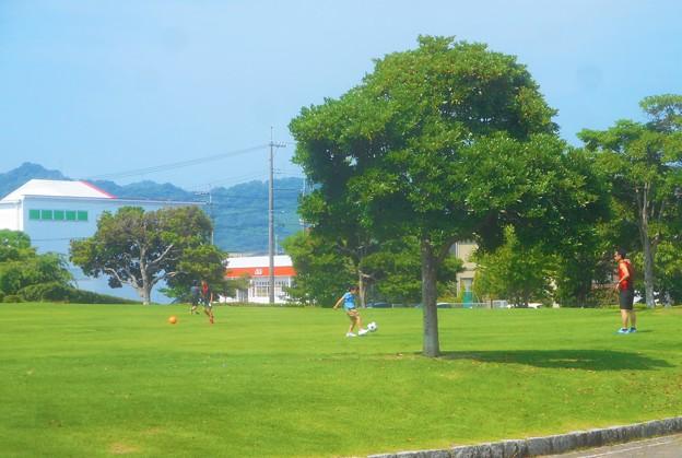 のどかな日曜日@サッカ-少年とピッチのような芝生公園