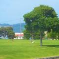 写真: のどかな日曜日@サッカ-少年とピッチのような芝生公園