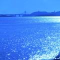 秋の瀬戸大橋と釣り人たち@玉野・渋川海岸