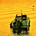 Photos: 夕暮れの海とアオサギ@新浜港沖合