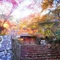 写真: 永徳院の秋@古刹・佛通寺