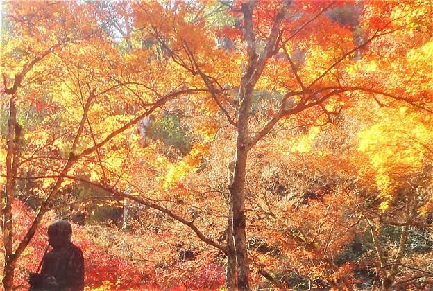 紅葉に包まれて@晩秋の仏さま