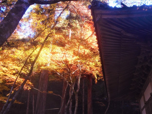 輪蔵(経蔵)の秋@古刹・佛通寺