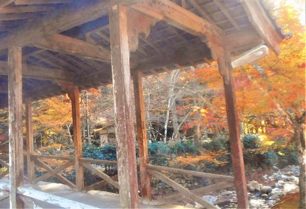 Photos: 佛通寺の紅葉@巨蟒橋(きょもうきょう)からの眺め