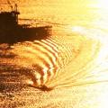 Photos: ストライプな光の干渉縞@大晦日イブの海域@瑠璃山展望台