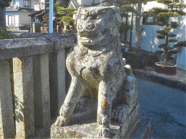 歌舞伎役者のような表情の狛犬@高諸神社